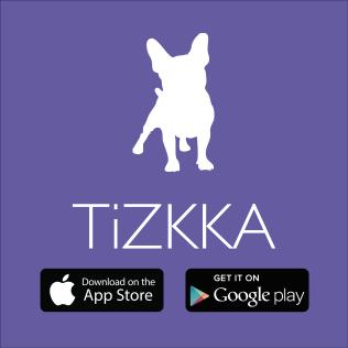 TiZKKA logo download